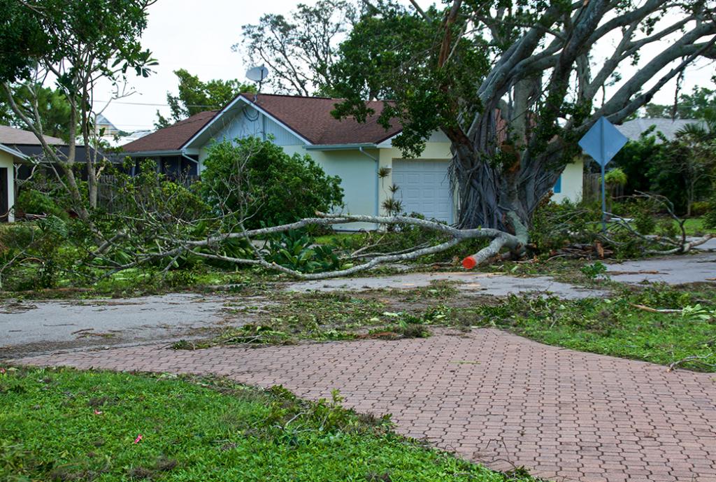South Florida House